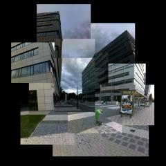 fotomontaz-Prosek-kos